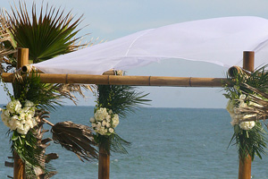 The Shores Resort and Spa weddings