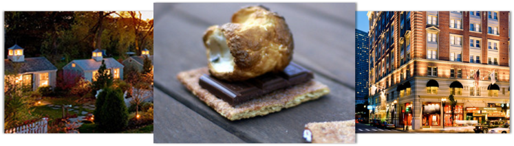 Traditional S'more