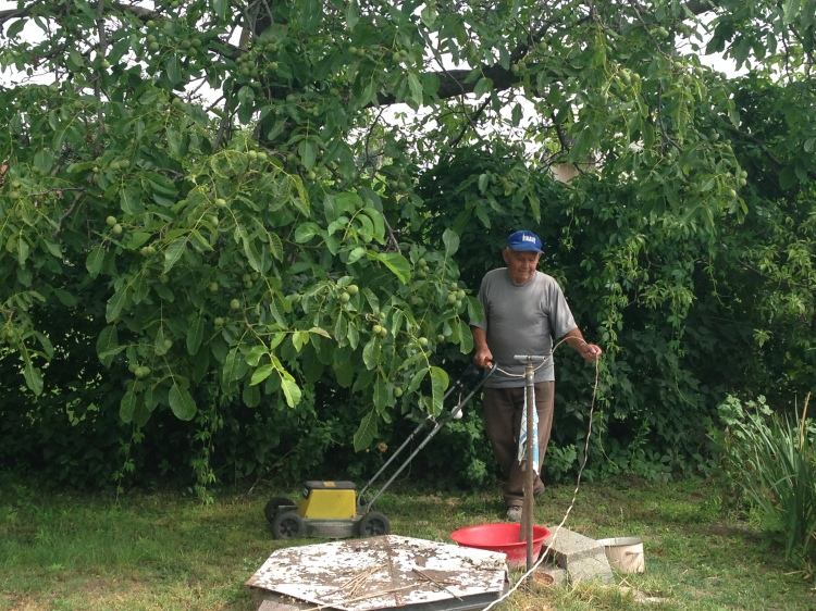 Team Member Agi Gerner's Grandpa with his fig tree on his 93rd birthday in Hungary