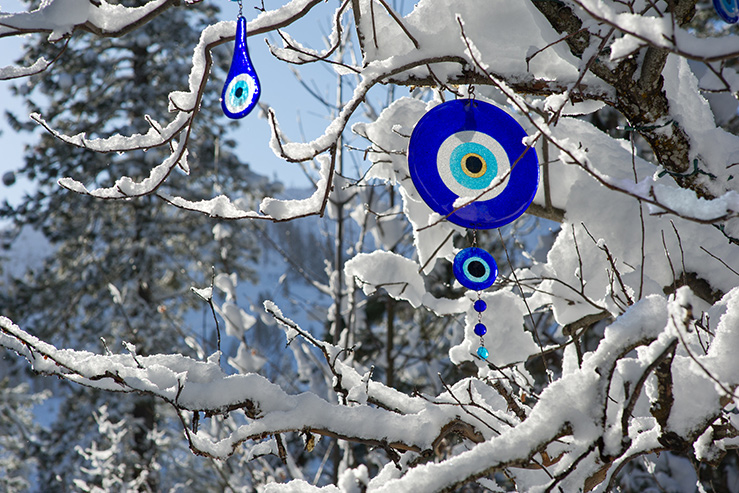 Evil Eye Tree in the snow, Sleeping Lady Mountain Resort, Leavenworth WA