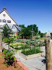 The Essex Garden 2