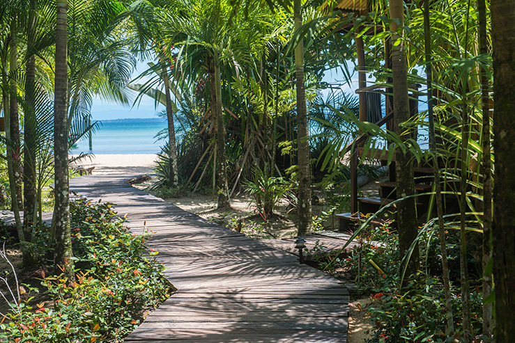 casa-cayuco-eco-adventure-lodge-walkway_hpg