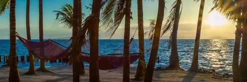 hero-hammocks
