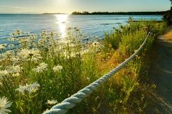 sunrise-ridge-waterfront-resort-beach-path_hpg